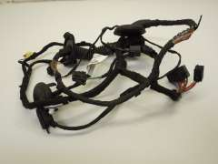 Audi A7 4G Front OS Right Door Wiring Loom 4G8971030CA (Item #61818)